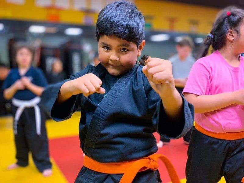 kids martial arts classes in clovis fresno