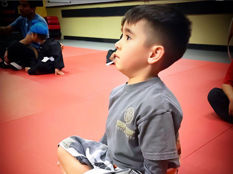 preschool martial arts classes in clovis fresno